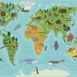 Карта-мира